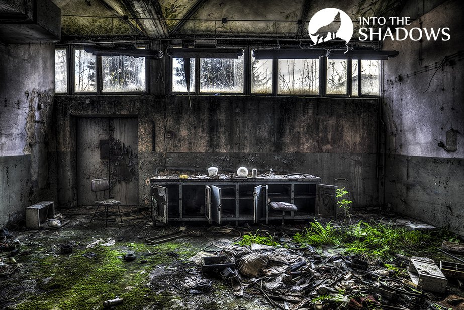 Abandoned factory knitting-used EUROPEAN: The room looks like the laboratory of a mad wizard. All thrown object, covered with ferns and other vegetation, which gives amazing effects.